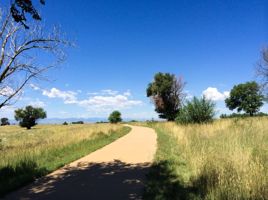 Bike Trail in Park