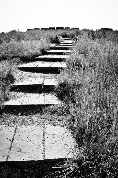Stairway Toward Heaven