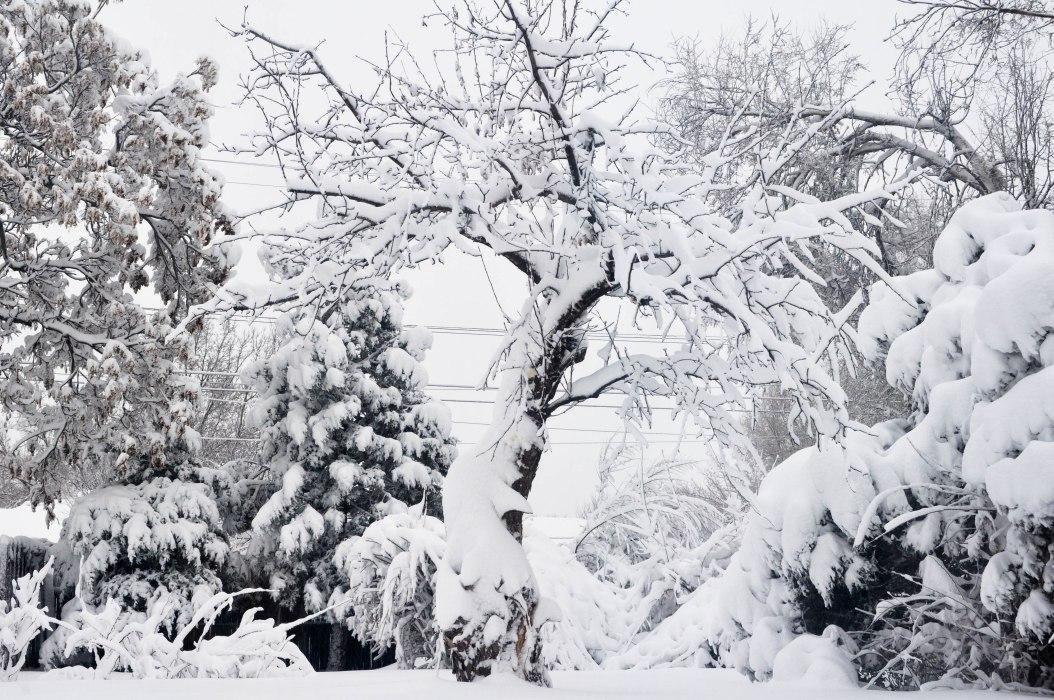 A Real Snowstorm