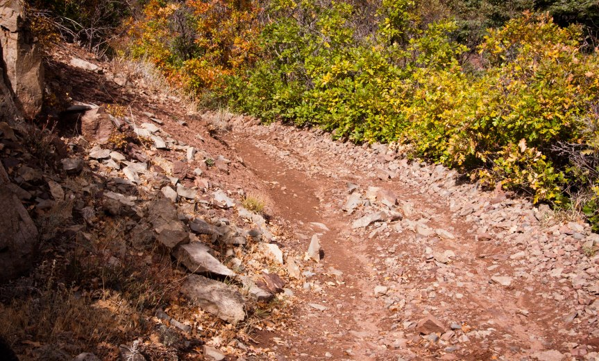 Why We Have Mountain Bikes