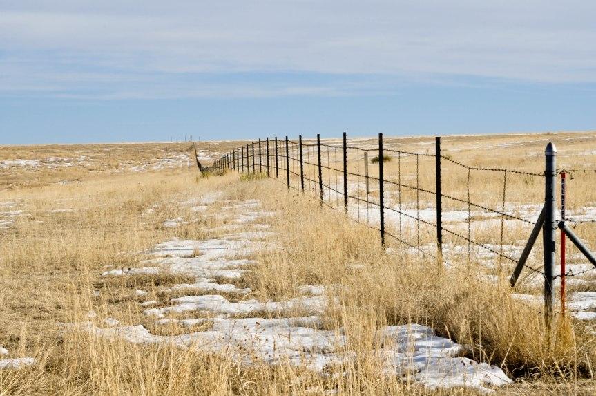 Along Fence Line