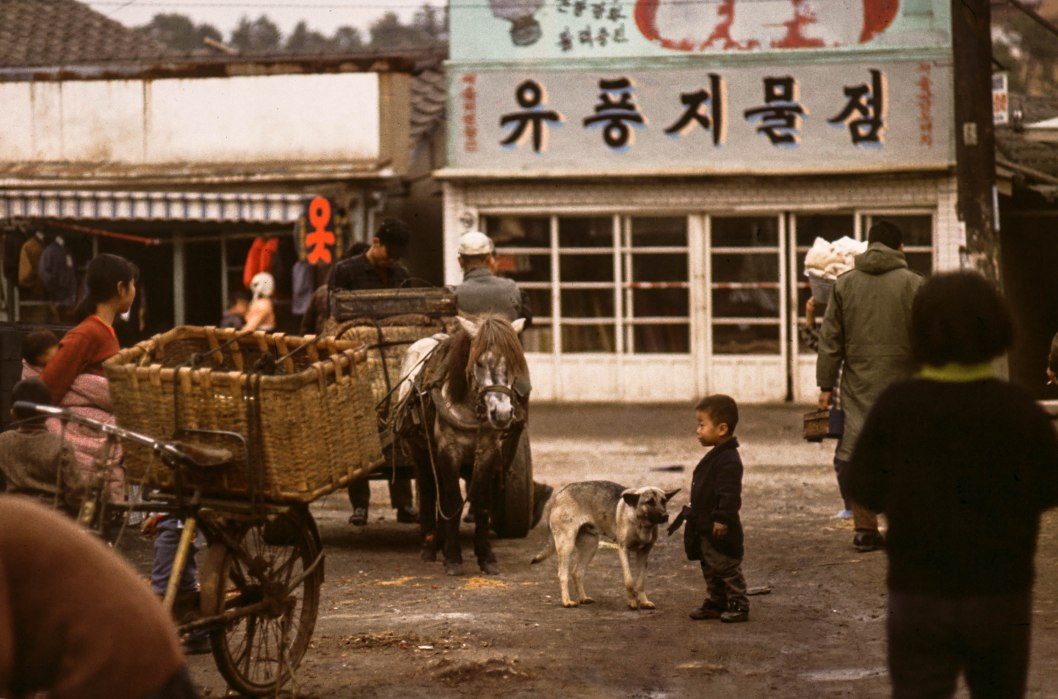 Boy and Dog - South Korea 1967