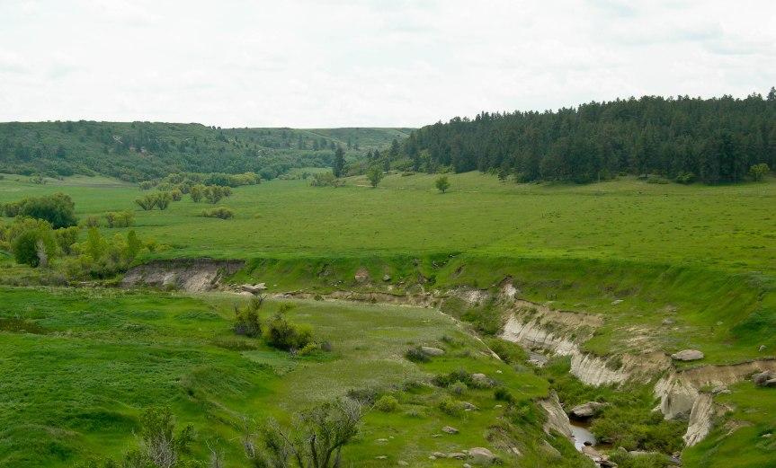 Green Valley on Upper Cherry Creek
