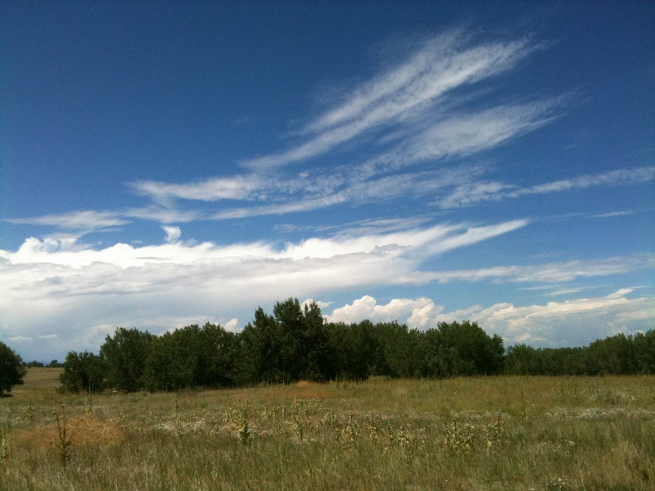 View of Clouds from Cherry Creek Park