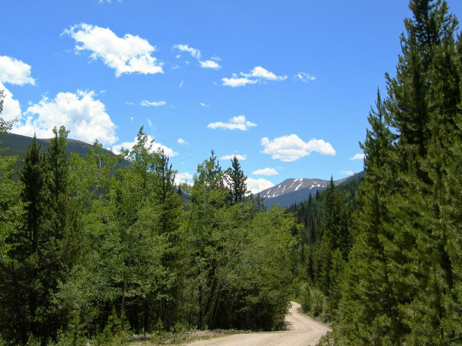 Road into Back Country
