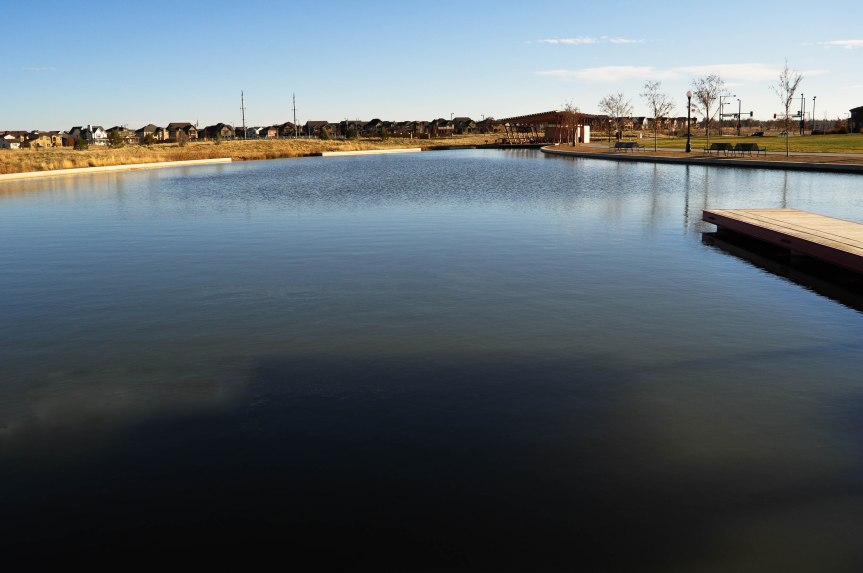 Placid Pond in Park
