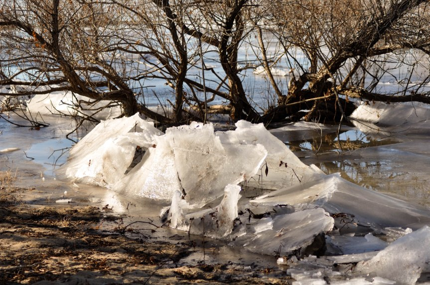 Ice Flows on a Lake Shore