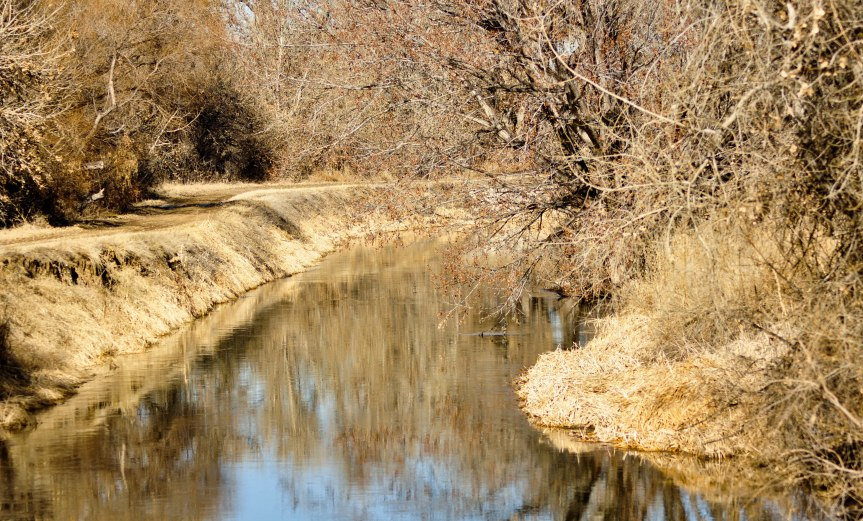 Trail Along Irrigation Canal