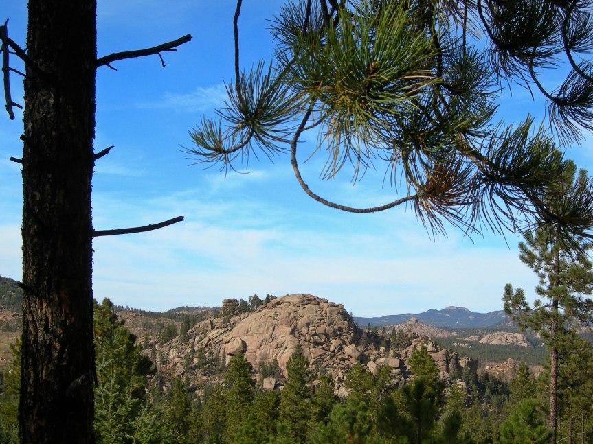 Rock Outcrops through the Trees