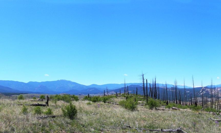 Another Panorama from Bike Trail