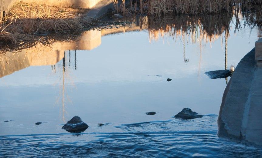 Reflections in Urban Stream