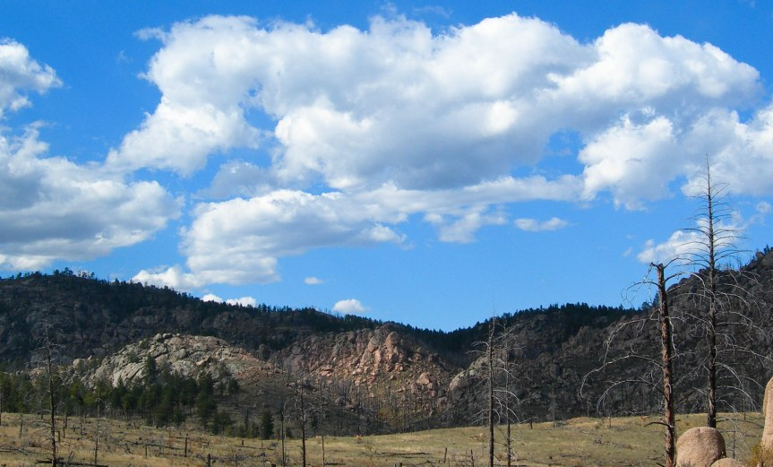 From Trail in Buffalo Creek Area