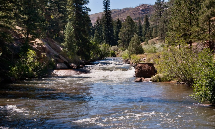 Along North Fork of South Platte in Colorado