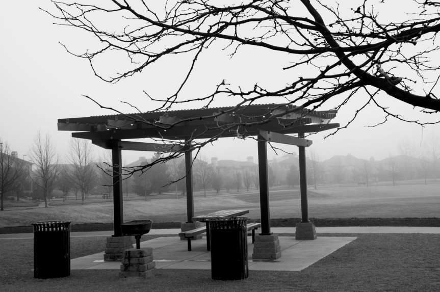 Foggy Park in B&W