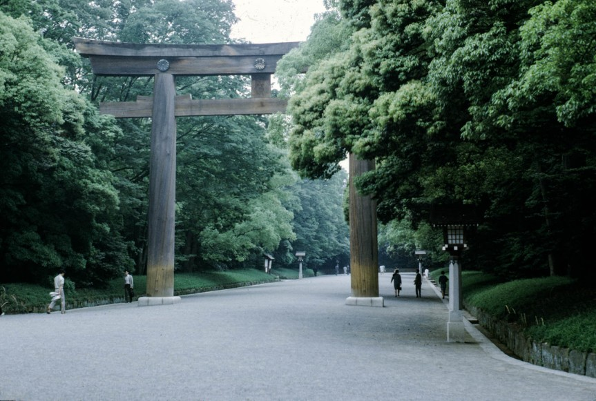 Park at Meiji Shrine
